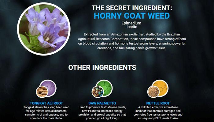 Testo Ultra ingredients