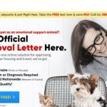 American Service Pets