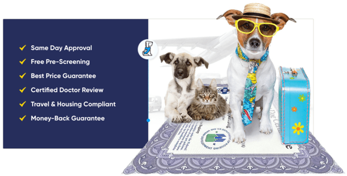 american service pets reviews