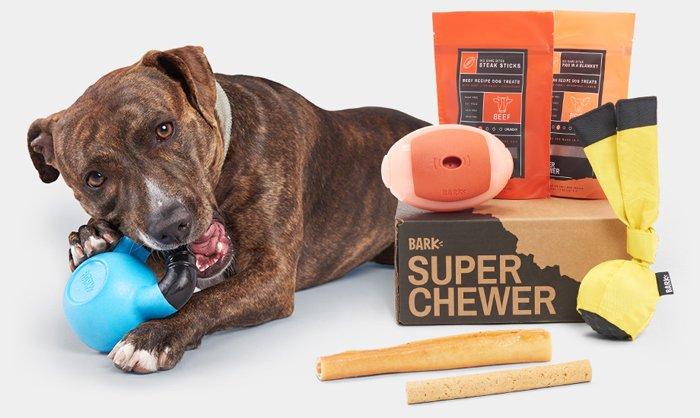 superchewer barkbox review