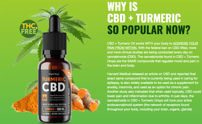 plant pure turmeric cbd turmeric review