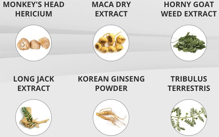 Primal Core Ingredients
