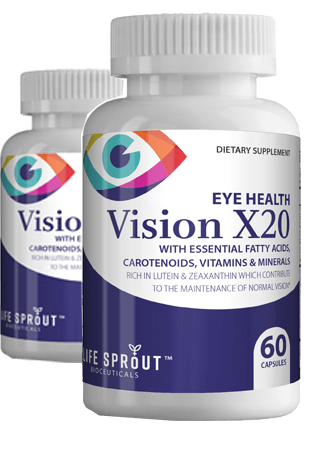 Vision RX20